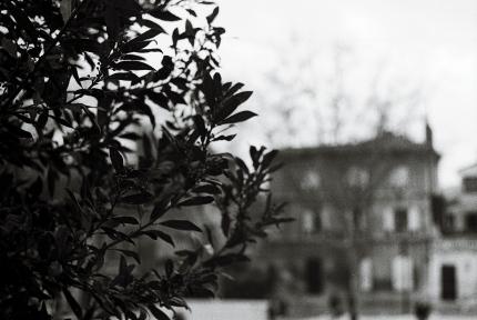 Olympus OM 100- Avignon